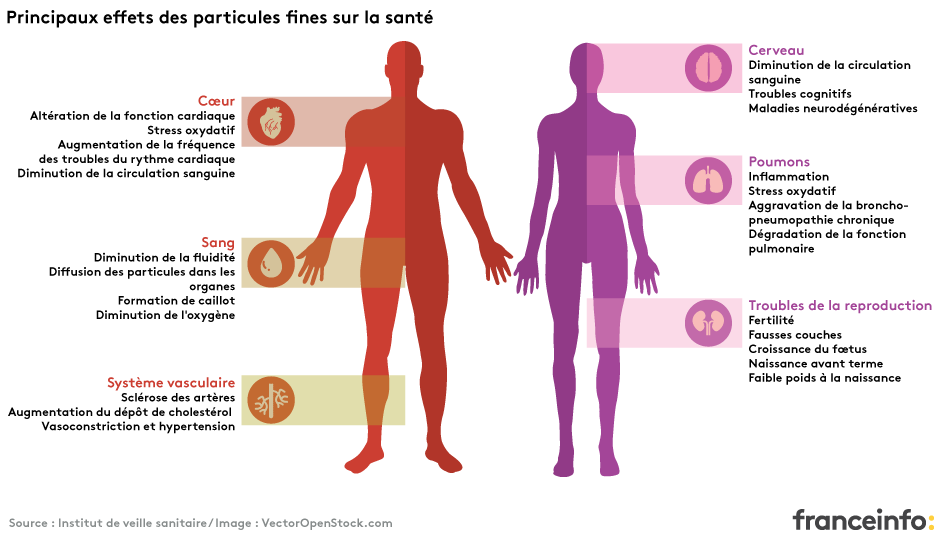 risques-microparticules-pollution-sante-environnement-infographie
